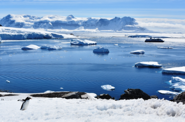 I thought this picture had it all-Penguin, water, ship, Zodiac, icebergs, glacier and mountains!