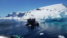 Loved cruising among-st all the icebergs