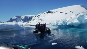 Loved cruising among-st all the icebergs