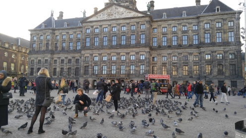 The pigeons love hanging out in one of the central squares—maybe it has something to do with all the people feeding them.