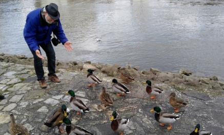 Phil tries to explain to the ducks that he would just LOVE to feed them, but he has no food.